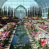arch - garden