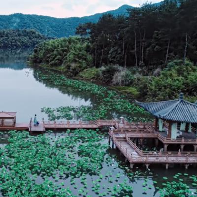 Lotus Pier lake
