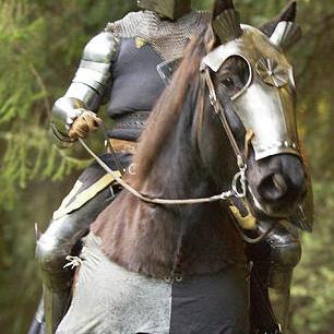 knight-type