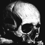 01.01 - skull