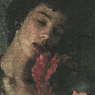 080. renaissance porn